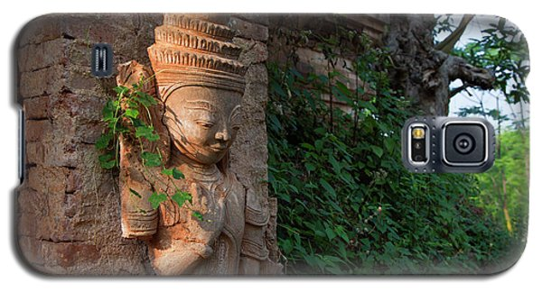 Burma_d195 Galaxy S5 Case