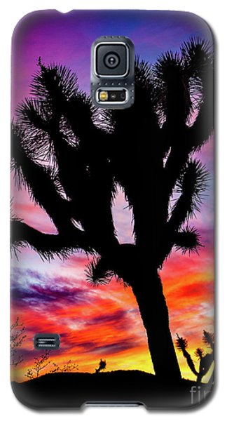 Burning Sky Galaxy S5 Case
