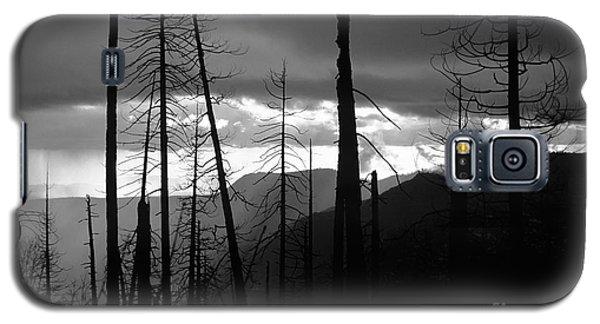 Burnt Forest - Yosemite Galaxy S5 Case