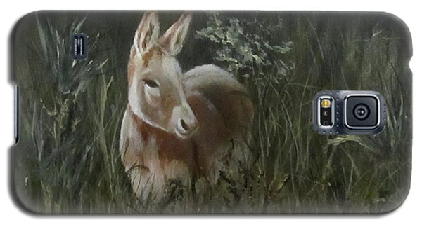 Galaxy S5 Case featuring the painting Burro In The Wild by Roseann Gilmore