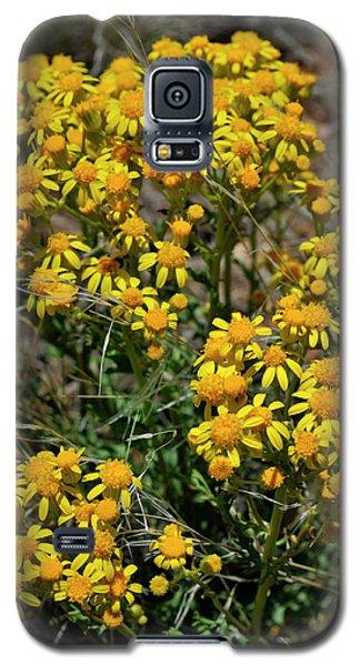 Burst Of Yellow Galaxy S5 Case