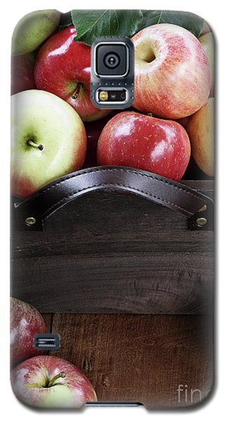 Galaxy S5 Case featuring the photograph Bushel Of Apples  by Stephanie Frey