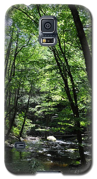 Bushkill Creek Galaxy S5 Case
