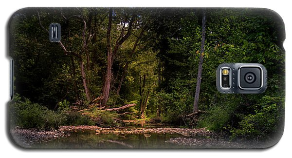 Busiek State Forest Galaxy S5 Case