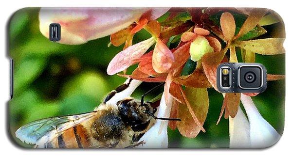 Busy As A Bee Galaxy S5 Case
