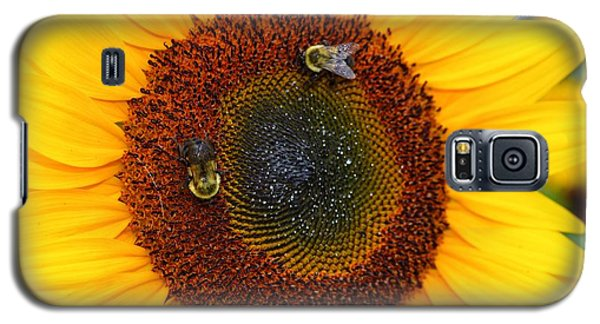 Busy Bees  Galaxy S5 Case