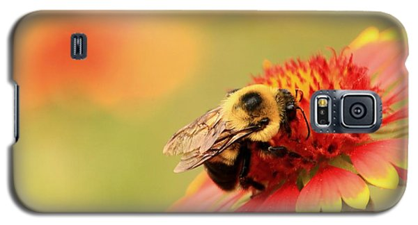 Galaxy S5 Case featuring the photograph Busy Bumblebee by Chris Berry