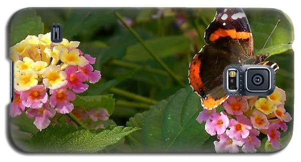 Galaxy S5 Case featuring the photograph Busy Butterfly Side 1 by Felipe Adan Lerma