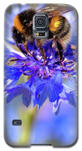 Busy Little Bee Galaxy S5 Case