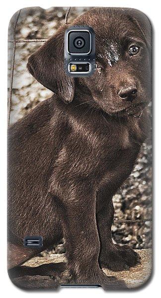 But Im Still Cute Right Galaxy S5 Case