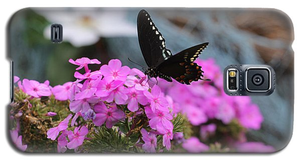 Butterfly -- Black On Pink Galaxy S5 Case