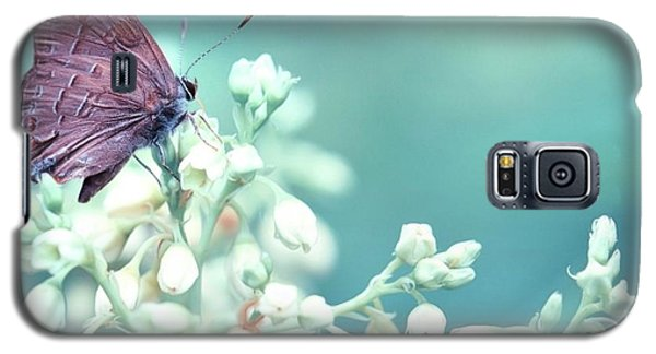 Galaxy S5 Case featuring the photograph Buterfly Dreamin' by Mark Fuller