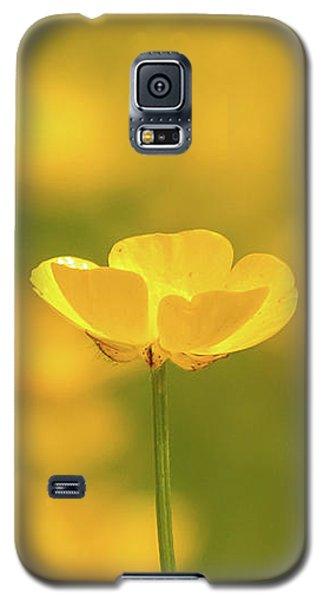 Butter Wouldnt Melt Galaxy S5 Case