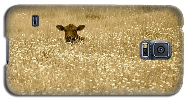 Buttercup In Sepia Galaxy S5 Case by JD Grimes