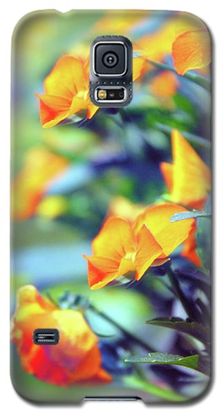 Galaxy S5 Case featuring the photograph Buttercups by Jessica Jenney