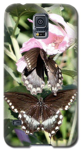 Butterflies Are Free 3 Galaxy S5 Case