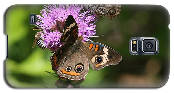 Galaxy S5 Case featuring the photograph Butterflies And Purple Flower by Cathy Harper
