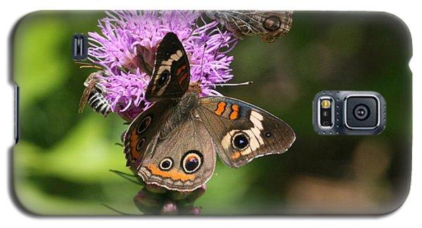 Butterflies And Purple Flower Galaxy S5 Case