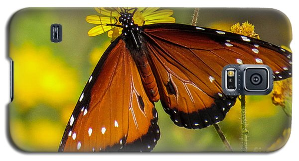 Butterfly 1 Galaxy S5 Case