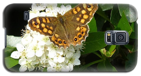 Galaxy S5 Case featuring the photograph Butterfly 1 by Jean Bernard Roussilhe