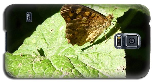 Galaxy S5 Case featuring the photograph Butterfly 2 by Jean Bernard Roussilhe