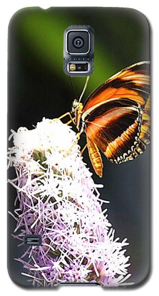 Butterfly 2 Galaxy S5 Case by Tom Prendergast