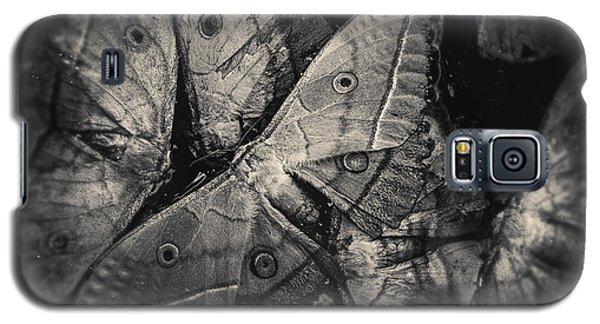 Butterfly #2056 Galaxy S5 Case
