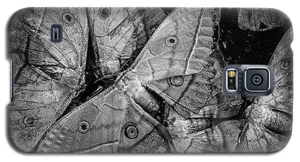 Butterfly #2056 Bw Galaxy S5 Case