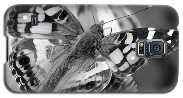Butterfly American Lady Galaxy S5 Case