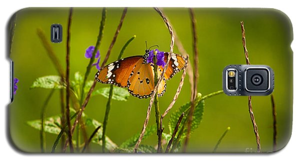 Butterfly And Flower Galaxy S5 Case