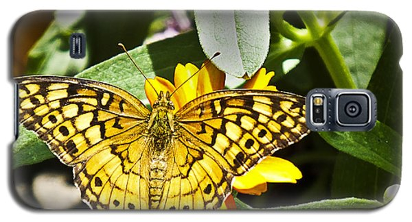 Galaxy S5 Case featuring the photograph Butterfly At Rest by Bill Barber
