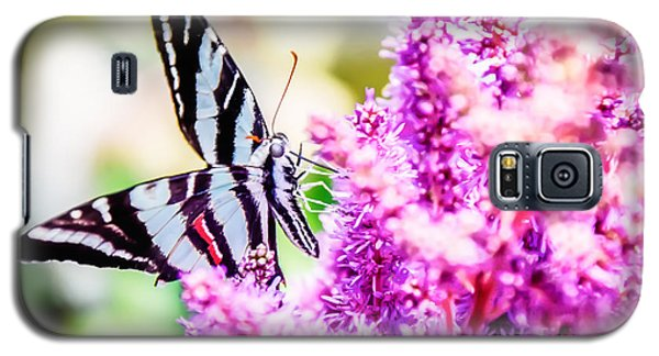 Butterfly Beautiful  Galaxy S5 Case