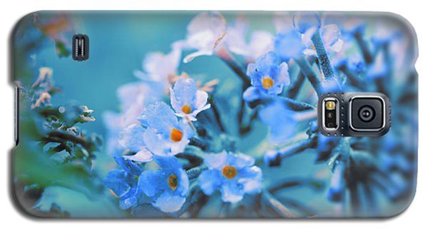 Galaxy S5 Case featuring the photograph Butterfly Bush by Douglas MooreZart