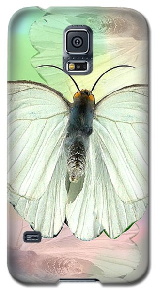 Butterfly, Butterfly Galaxy S5 Case by Rosalie Scanlon
