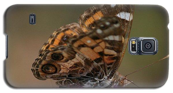 Butterfly Galaxy S5 Case by Cathy Harper