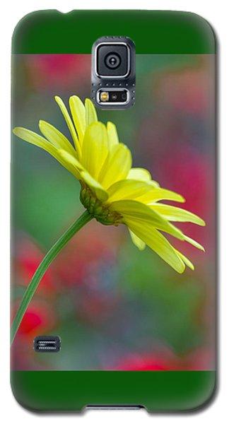 Butterfly Daisy Galaxy S5 Case