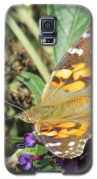 Galaxy S5 Case featuring the photograph Butterfly Details by Bonnie Muir