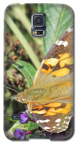 Butterfly Details Galaxy S5 Case by Bonnie Muir