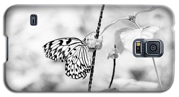Butterfly Eatting  Galaxy S5 Case