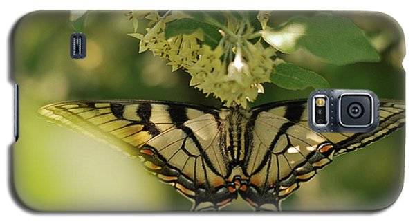 Galaxy S5 Case featuring the photograph Butterfly From Another Side by Susan Capuano