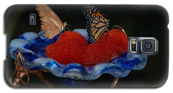 Galaxy S5 Case featuring the photograph Butterfly Fruit by Richard Bryce and Family
