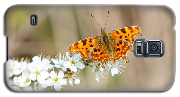 Galaxy S5 Case featuring the photograph Butterfly by Gary Bridger