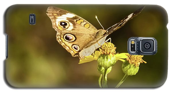 Butterfly In Bokeh Galaxy S5 Case