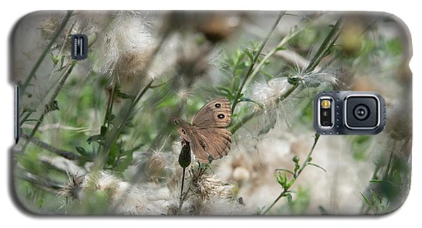 Butterfly In Puffy Seed Heads Galaxy S5 Case