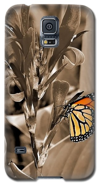 Butterfly In Sepia Galaxy S5 Case