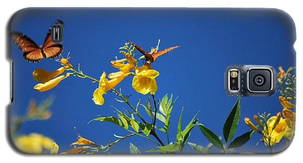 Galaxy S5 Case featuring the photograph Butterfly In The Sonoran Desert Musuem by Donna Greene