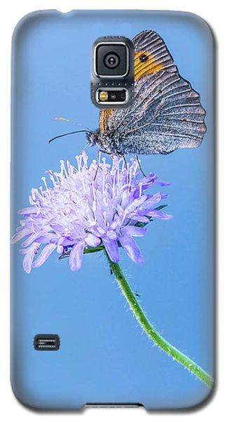 Butterfly Galaxy S5 Case by Jaroslaw Grudzinski