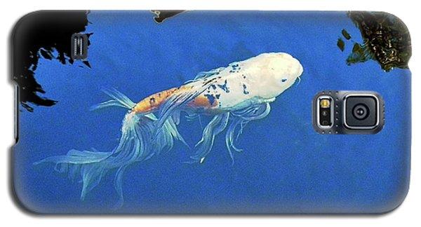 Butterfly Koi In Blue Sky Reflection Galaxy S5 Case