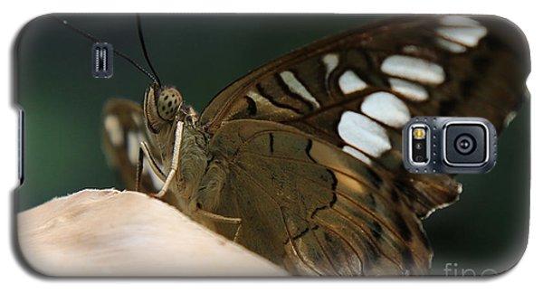 Butterfly Macro Galaxy S5 Case