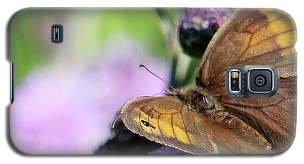 Butterfly Photograph  Galaxy S5 Case